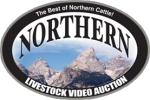 Northern Livestock Video Auction