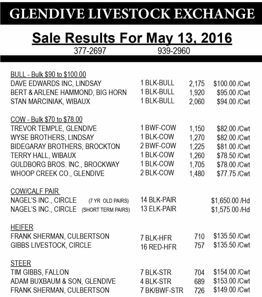 Glendive Livestock sale results May 13, 2016