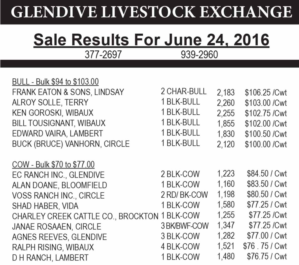 Glendive Livestock sale results June 24, 2016