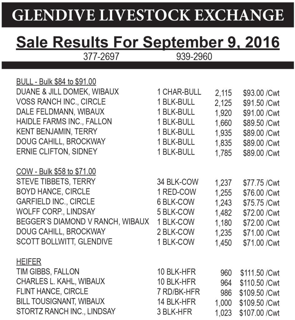 Glendive Livestock sale results September 9, 2016