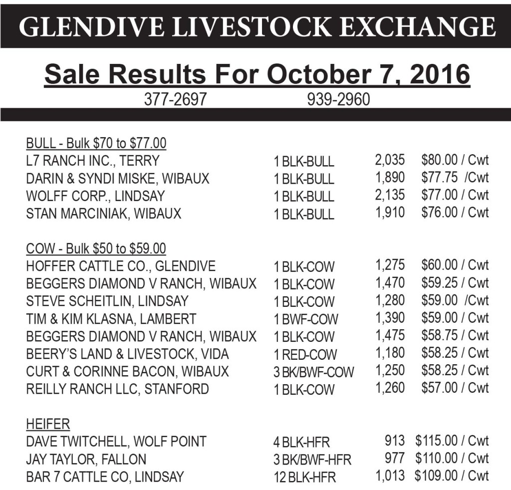 Glendive Livestock sale results October 7, 2016